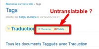 Buttons on tag page without translation.jpg