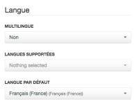 language-2.png